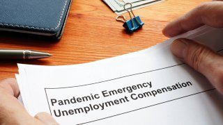 Formulario simula petición de ayuda por desempleo
