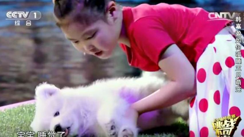 TLMD-nina-que-hipnotiza-animales-en-china