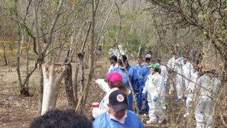 Personas recuperan cuerpos de fosas clandestinas.