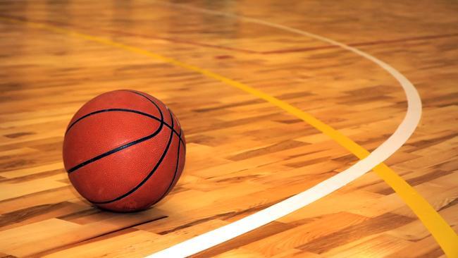 tlmd_basketballssjpg_bim