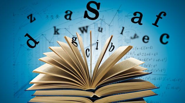 tlmd_diccionario_de_shutterstock_st