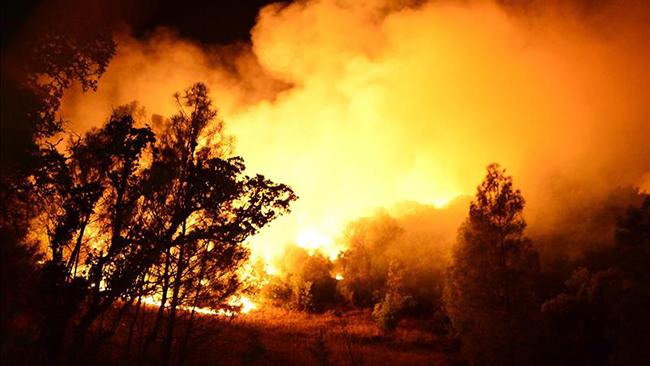 tlmd_incendiocalifornia1