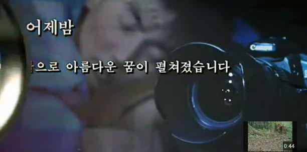 tlmd_norcoreano3