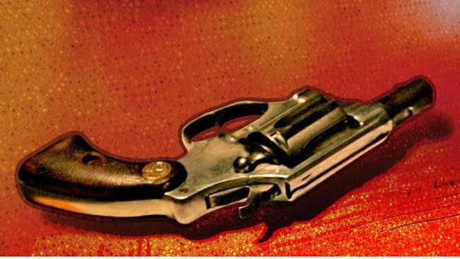 tlmd_pistola25jpg_bim