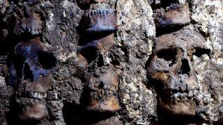 Conjunto de cráneos aztecas hallados en México