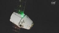 En video: llega nave con regalos de Navidad y 40 ratones