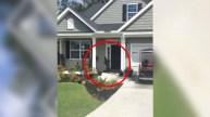 Mira quién toca la puerta...en video captan insólita visita