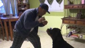 Telemundo Responde le ayudó con reembolso de veterinario