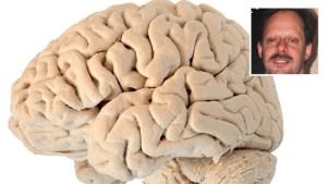 Cómo analizarán el cerebro del autor de masacre en Las Vegas
