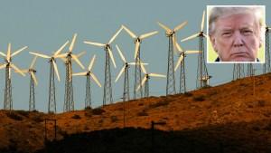 Qué dijo Trump sobre las turbinas eólicas y el cáncer