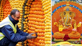 Gigantes cítricos, el increíble final de miles de naranjas y limones