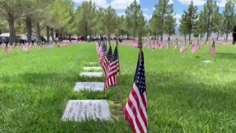 Dia de los caídos: conmemorando a los que fallecieron
