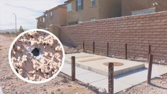Ataque a casa: Lluvia de balas a hogares de Las Vegas