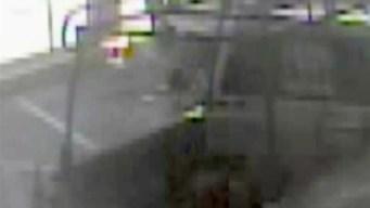 Acusado de robar vehículo de FHP es arrestado en Clearwater