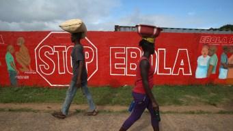 OMS: brote de ébola es una emergencia internacional