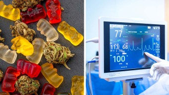 Menor termina en condición crítica tras consumir comestibles de marihuana