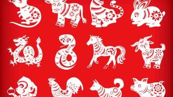 Las predicciones del horóscopo chino para este año