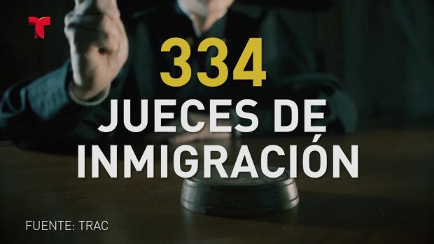 Immigración cortes por los números