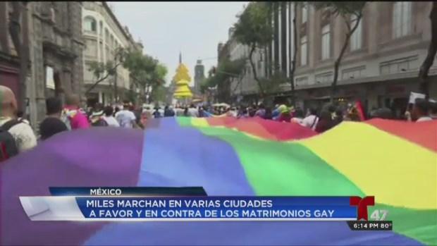 [TLMD - MIA] Marchan a favor del matrimonio gay en México