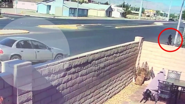 [TLMD - LV] Policía revela video de atropellamiento de mujer y su perro