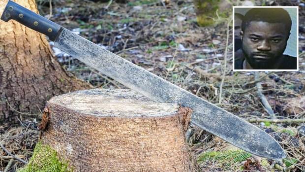 A machetazos: anciano asesinado por la persona menos pensada