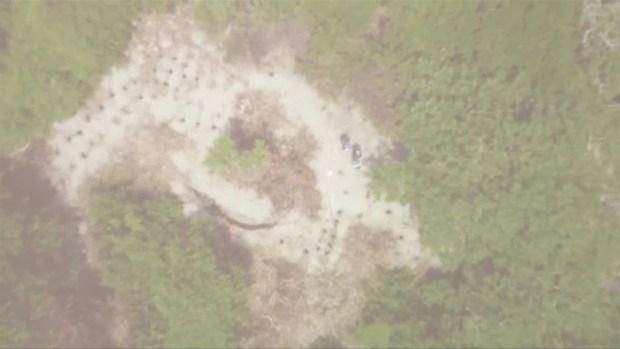 [TLMD - LV] Hallan más de 160 cuerpos en fosa clandestina en México