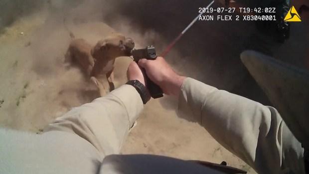 [TLMD - LV] Policía metropolitana mata a perro en casa de Las Vegas
