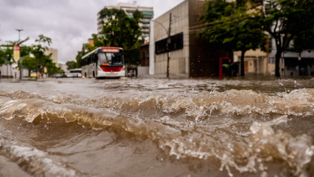 Video: 41 muertos por inundaciones en Brasil