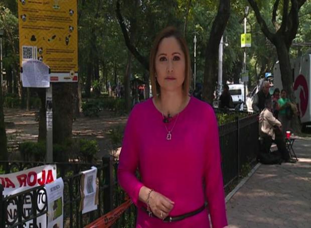 México: exterminan a perros en plazas públicas