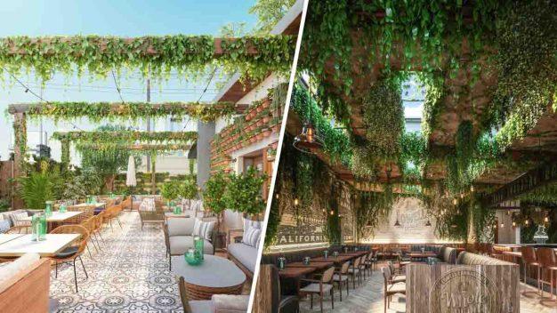 Luz verde al primer café y restaurante a base de cannabis
