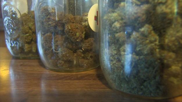 Legalización de marihuana traería beneficios para Nevada