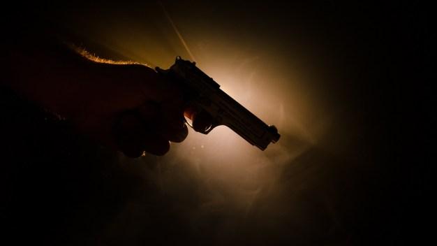 Acusados de violencia doméstica podrán tener armas