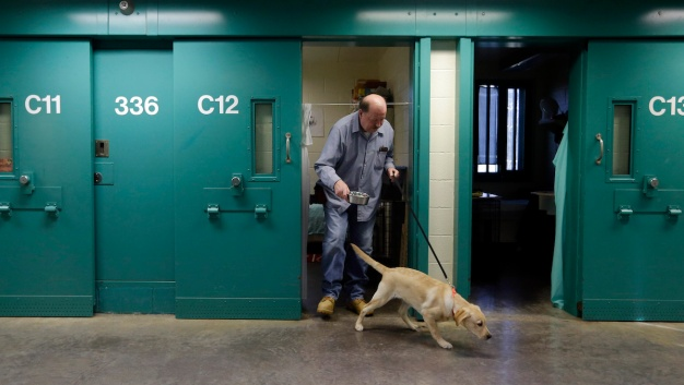 Prison Dog Training Programs Rehabilitate Canines and Cons