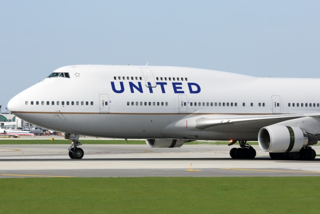 Prohibirán mascotas en aviones hacia o desde Las Vegas