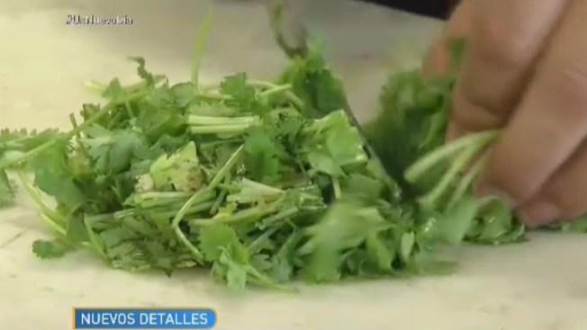Más de 380 personas enfermas por cilantro