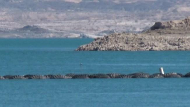 Encuentran cadáver en el Lago Mohave