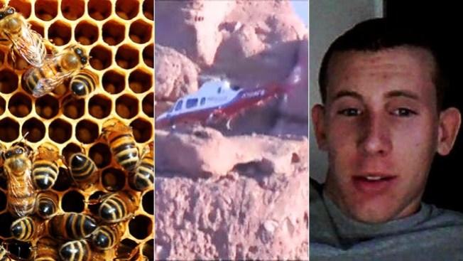 Muere huyendo de abejas