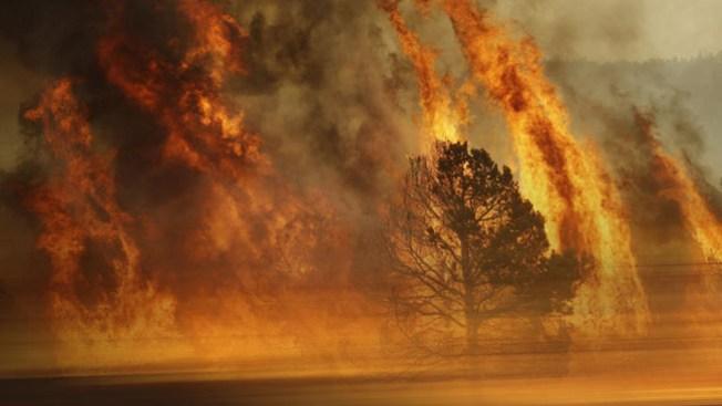 Feroz incendio forestal en California