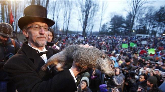 ¿Cuándo acaba invierno según la marmota?