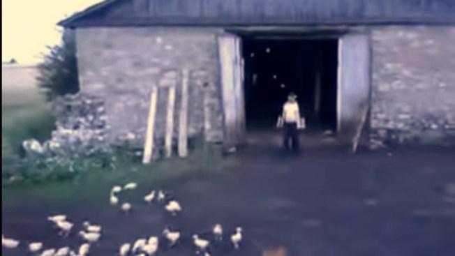 "Video viral de talentoso ""pastor de patos"""